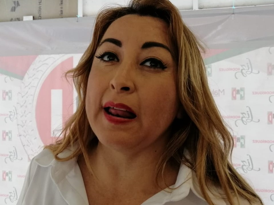 Claudia Yáñez e Indira Vizcaíno deben dirimir diferencias: Liz Rodríguez