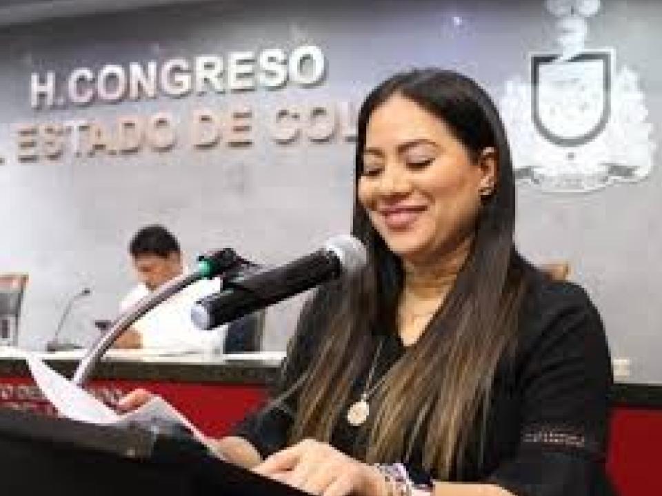 No fue plagio, es derecho comparado, dice Ana Karen Hernández