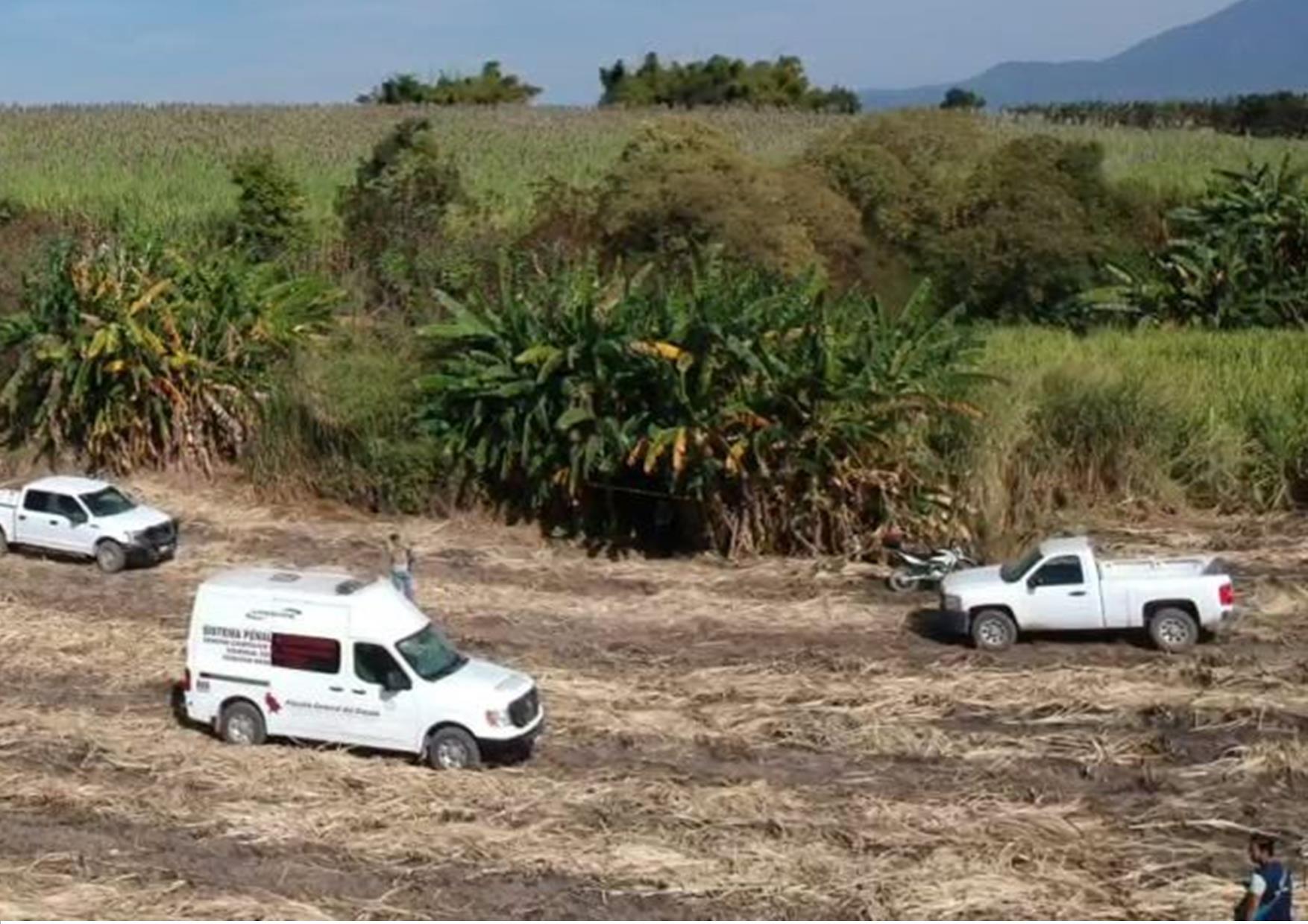 Se encuentran 29 cuerpos en fosas clandestinas de Nayarit