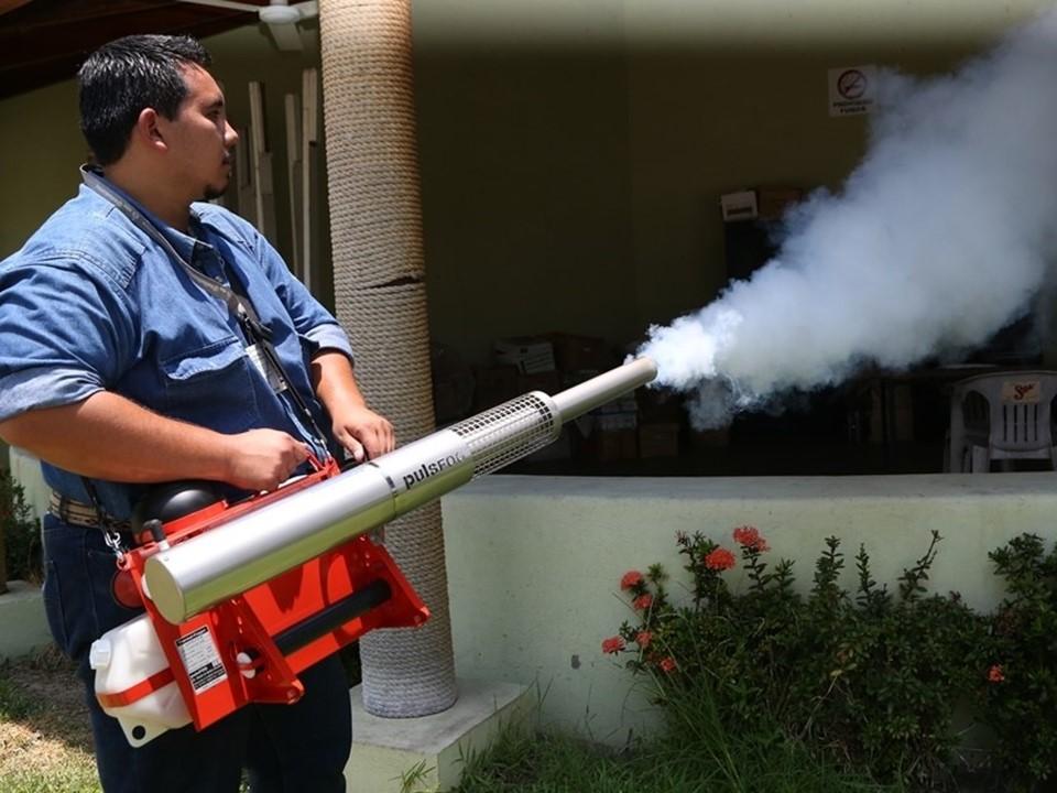 Protegen contra el dengue  en periodo vacacional